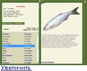 нева рыбалка уклейка