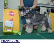 Хендлер Светлана Степанова (Новосибирск) - Страница 3 132150226535005784