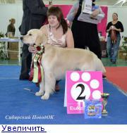 Хендлер Светлана Степанова (Новосибирск) - Страница 3 132150226893003720