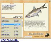 базы рыбалка урал