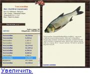 рыбалка на капустных озерах