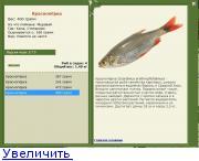 плотва прикормка русская рыбалка 3