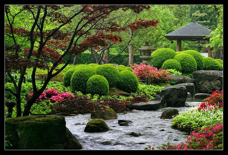 Хотя японские сады выглядят