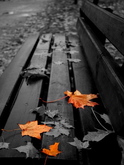 слушать я ловлю на лету озябшую листву