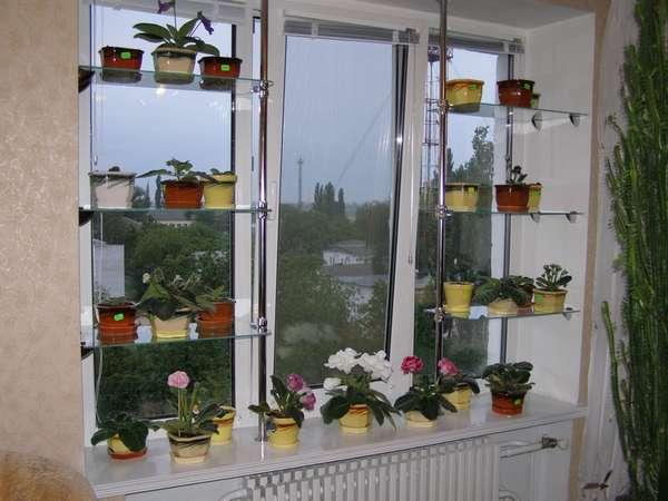 Стеллажи, полки для цветов - страница 11 - форум цветоводов .