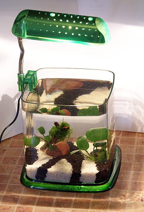 Сделай своими руками нано аквариум