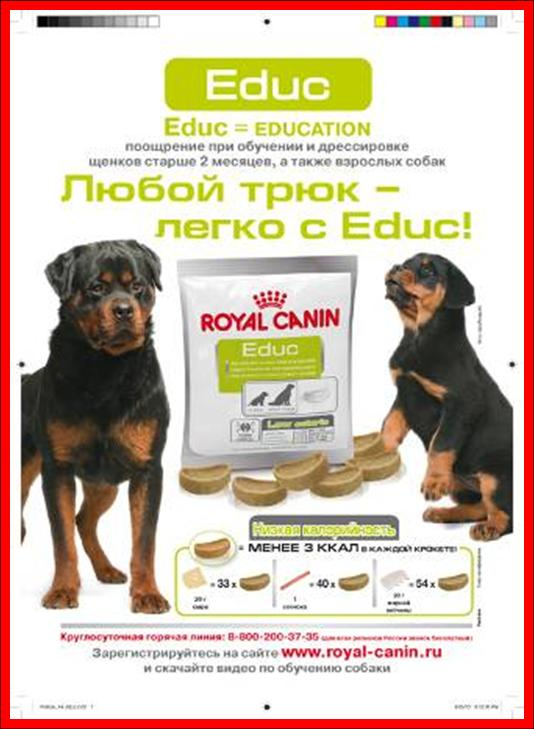 Royal Canin , OBESITY , MANAGEMENT , Роял Канин