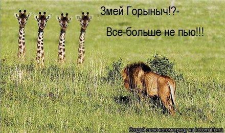http://forumimage.ru/uploads/20101210/129201978996005668.jpg