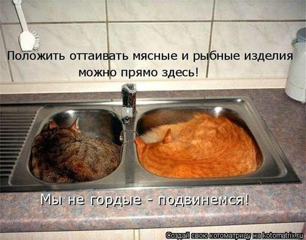 http://forumimage.ru/uploads/20101221/129295128992001969.jpg