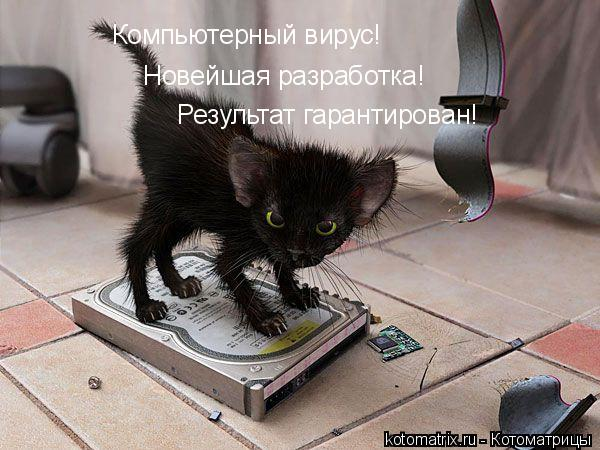 http://forumimage.ru/uploads/20101221/129295157645006996.jpg