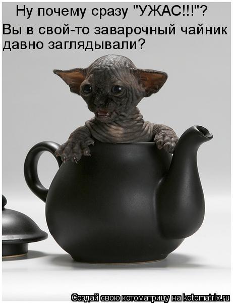 http://forumimage.ru/uploads/20101221/129295170147008182.jpg