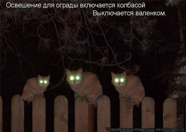 http://forumimage.ru/uploads/20101221/129295176846007051.jpg
