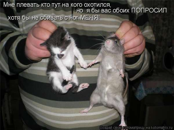 http://forumimage.ru/uploads/20101221/129295183549007238.jpg