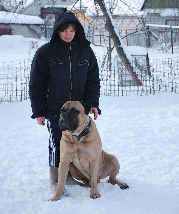 http://forumimage.ru/uploads/20110211/129742120045004956.jpg
