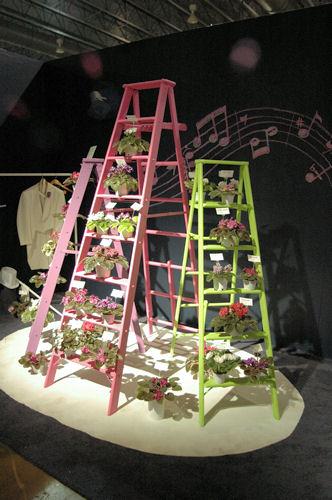 Flower show выставка цветов в филадельфии