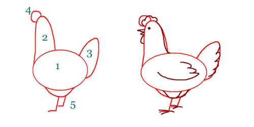 Рисунки куриц поэтапно карандашом