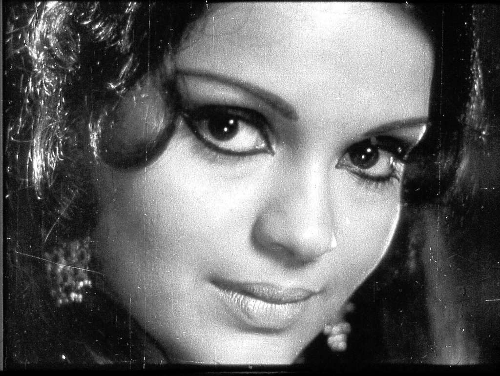 zeenat aman date of birth