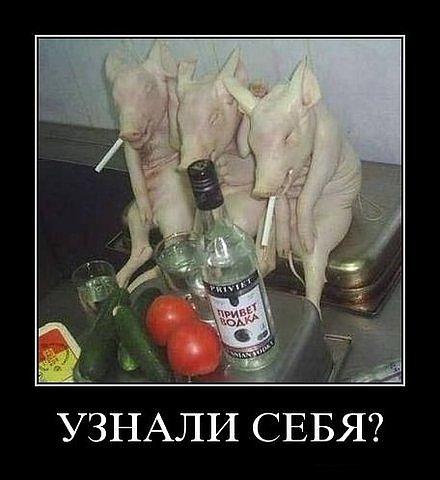 пьяную жену имеют негр после пьянки