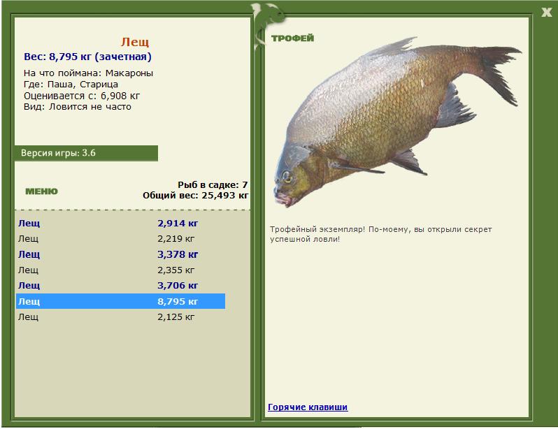 Зимняя морская рыбалка на эхолот