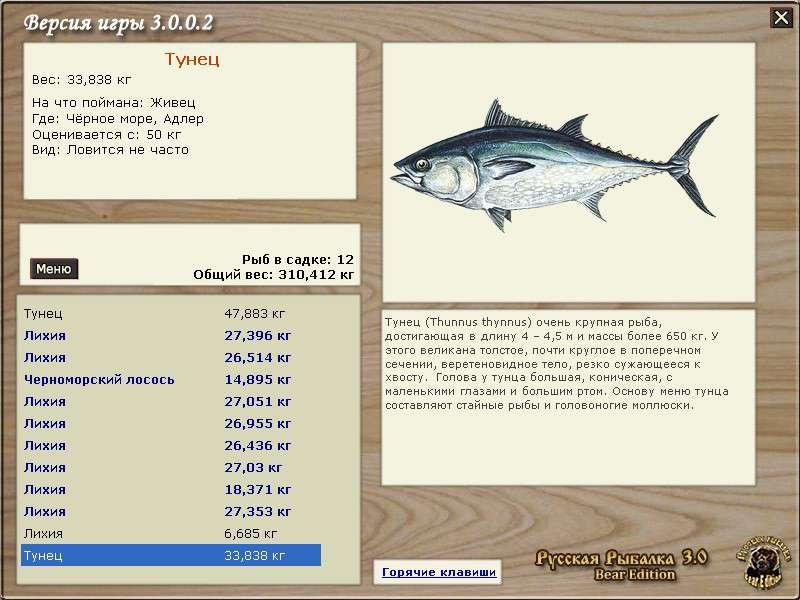 хаус • Русская Рыбалка 3 Bear Edition