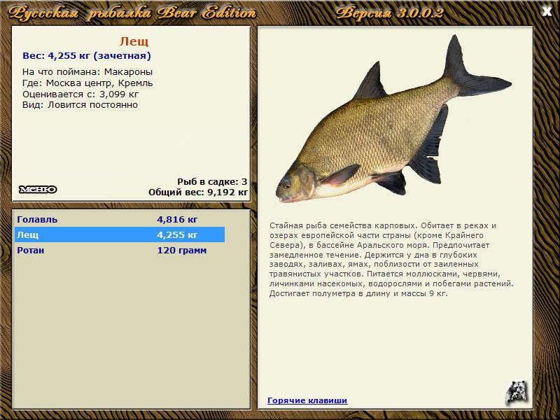 рыба чехонь на что ловить