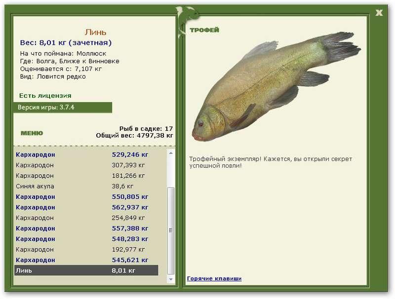 Русская Рыбалка 3 1 Западная Монголия