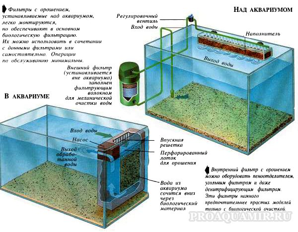 Донный фильтр в аквариуВещи своими руками из