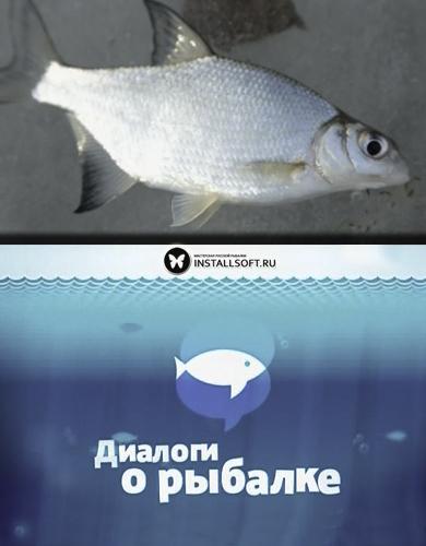 диалоги о рыбалке последние выпуски