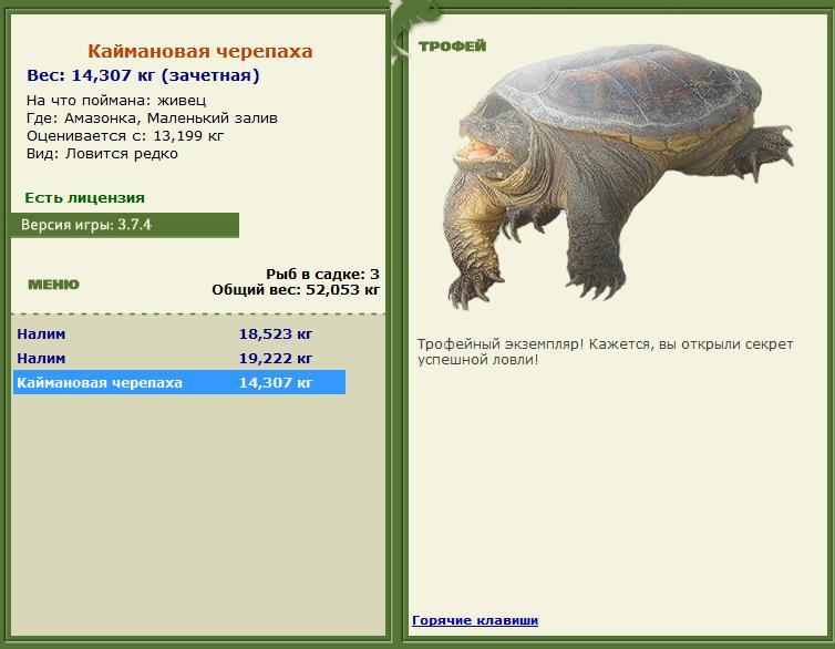 рр 3.7.4 на что ловить черепаху и где