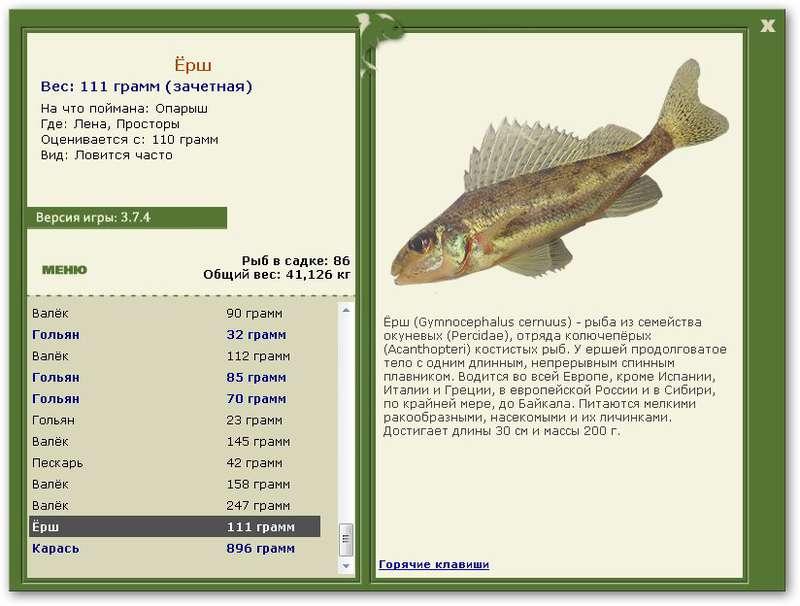 белоглазка рыба на что клюет