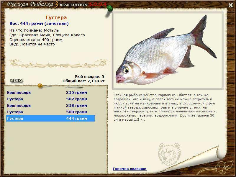 Рыбалка 3 клязьма количество