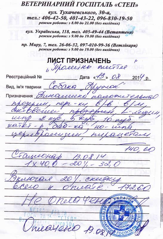 Финансовый отчет Дружка, анкета №