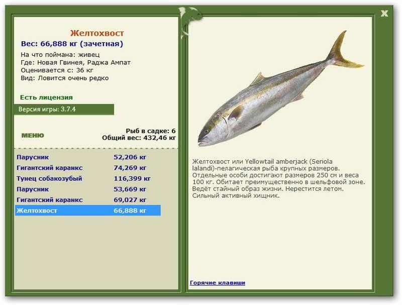 первый рыбак поймал 36 рыб