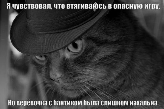 http://forumimage.ru/uploads/20141003/141232063148531362.jpg