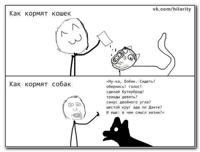 http://forumimage.ru/uploads/20141006/141258546211212671.jpg