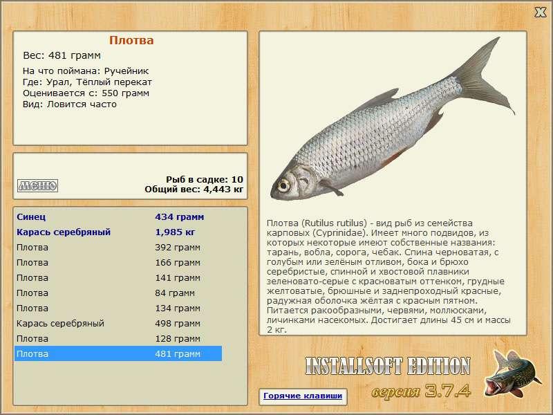 онего количество рыбалка 3.6