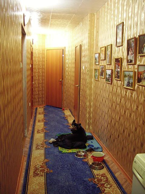 Личная страничка Тимура... или мой дом - моя крепость