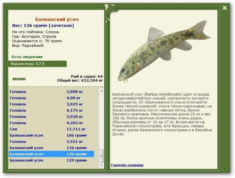 Болгария русская рыбалка