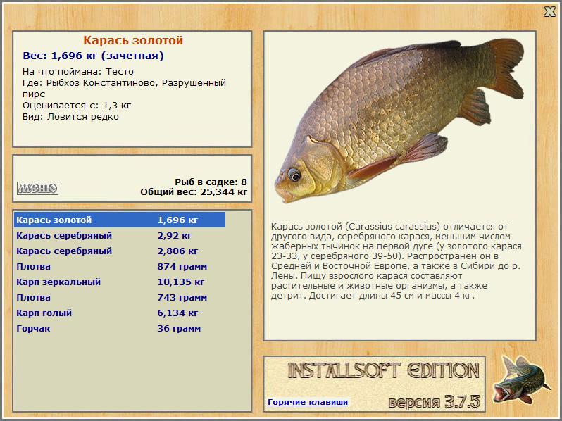 золотой карась интернет магазин рыбалка