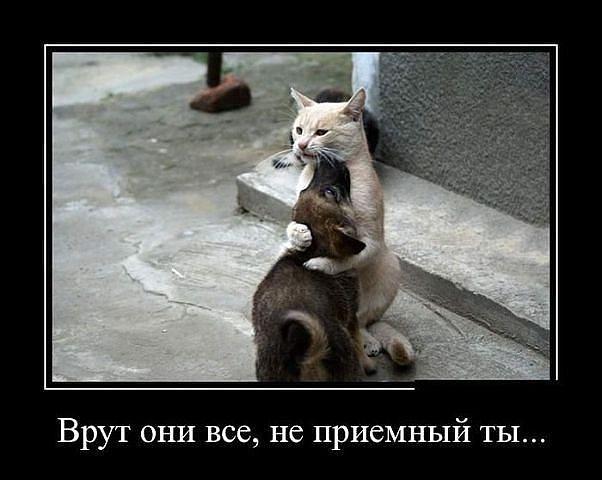 http://forumimage.ru/uploads/20141210/141821559586809611.jpg