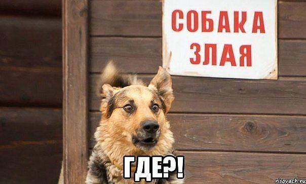 http://forumimage.ru/uploads/20141210/141821584438456865.jpg