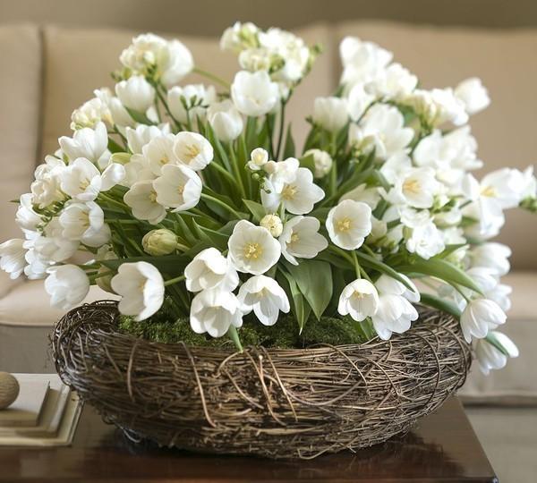 Апрель - месяц прекрасных весенних цветов