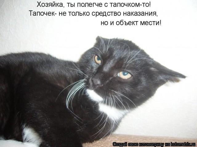 http://forumimage.ru/uploads/20150115/142136056947417579.jpg