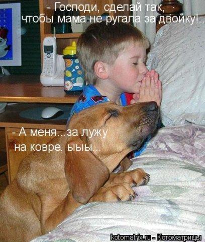 http://forumimage.ru/uploads/20150115/1421360939723284.jpg
