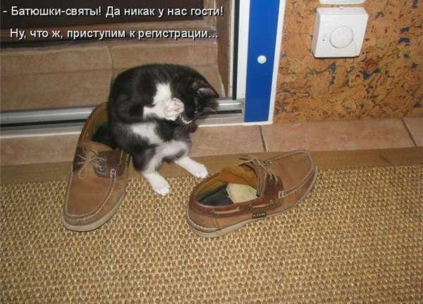 http://forumimage.ru/uploads/20150125/14221842454084580.jpg