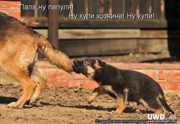 http://forumimage.ru/uploads/20150127/142236461581621986.jpg