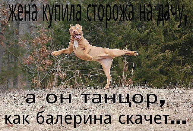 http://forumimage.ru/uploads/20150212/14237377107149422.jpg