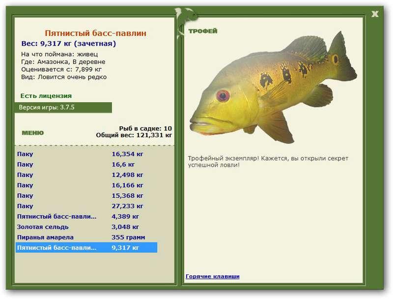 павлин • Рыбы • РУССКАЯ РЫБАЛКА