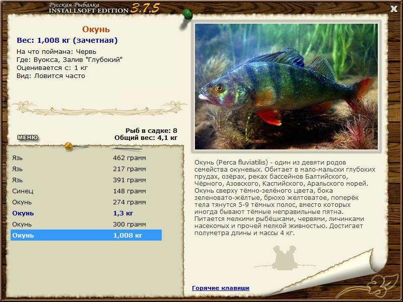 Русская рыбалка вуокса максимальный вес