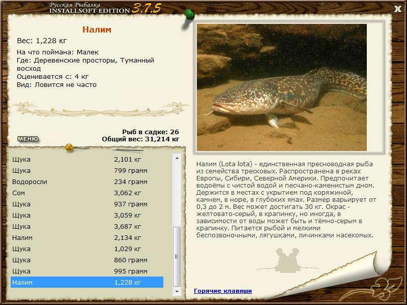 Рыбалка на Клязьме: рыбные места